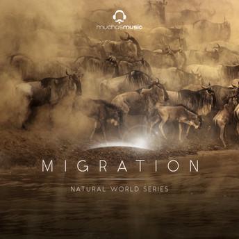 60a68e9d5908320015a07ea2_MUMU085_TNW-Migration_Art_1500.jpg