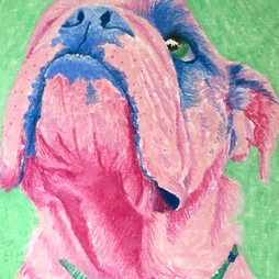 bulldog2.jpg