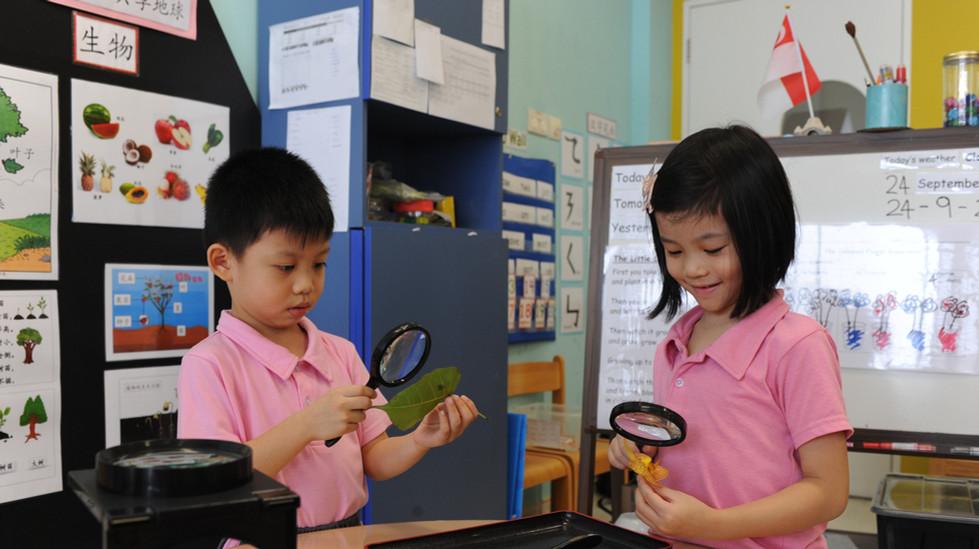 Our Mini Explorers