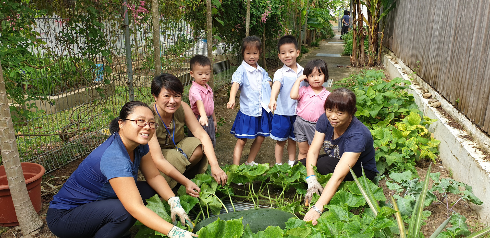 Community Garden Edibles Competition