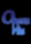 Logo Versuch.png