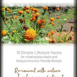 Free Eco Conscious Living Guide