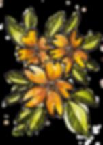 Watercolour_Orange Flowers.png