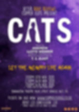 Cats New Poster photo.jpg