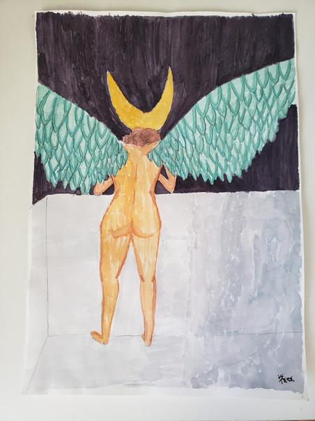 Voadora