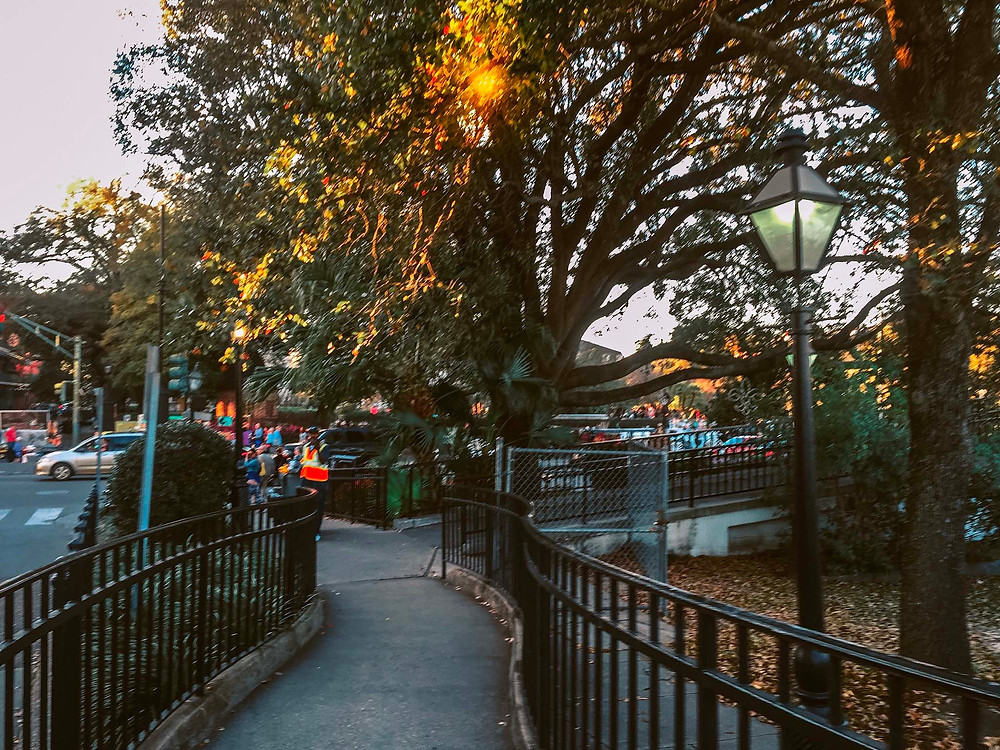 Where to walk in New Orleans