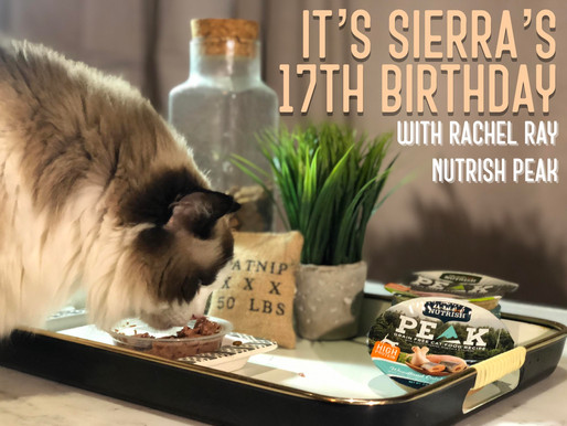 Sierra Turns 17 with Rachel Ray's Peak!