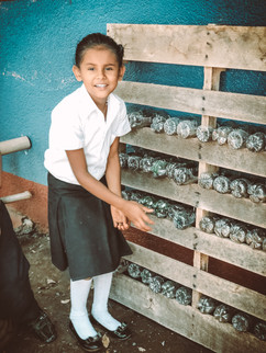 Mission Trips Nicargua Self Sustainable Education World Missions Outreach