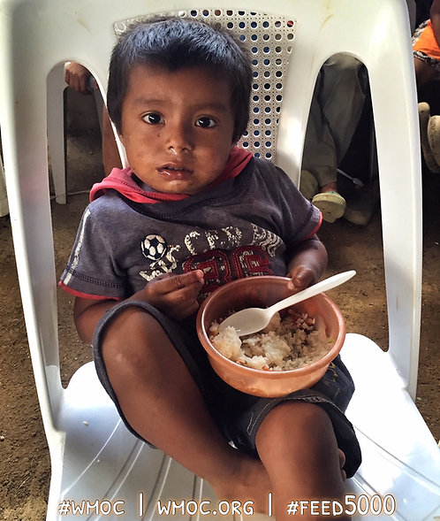 Sponsor 250 Meals Every Month