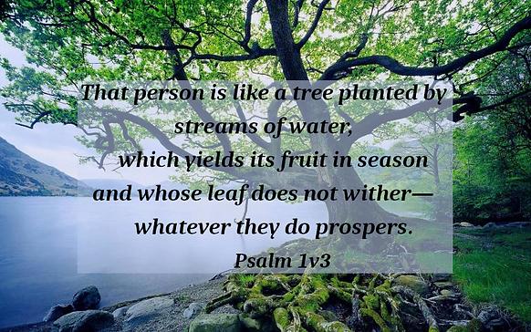 Psalm1v3.png