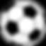 voetbal_bewerkt.png