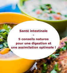Ebook santé intestinale