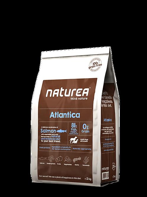 Grain Free Atlantica 2kg