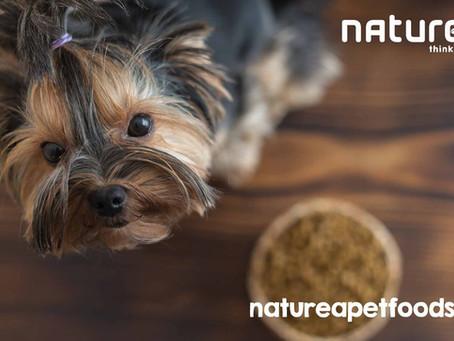 Πως να αντιμετωπίσετε τις αλλεργίες στο σκύλο.