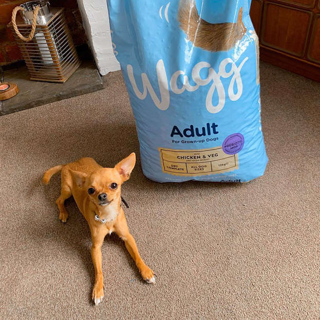 wagg-greece-dry-dog-food-adult-chicken