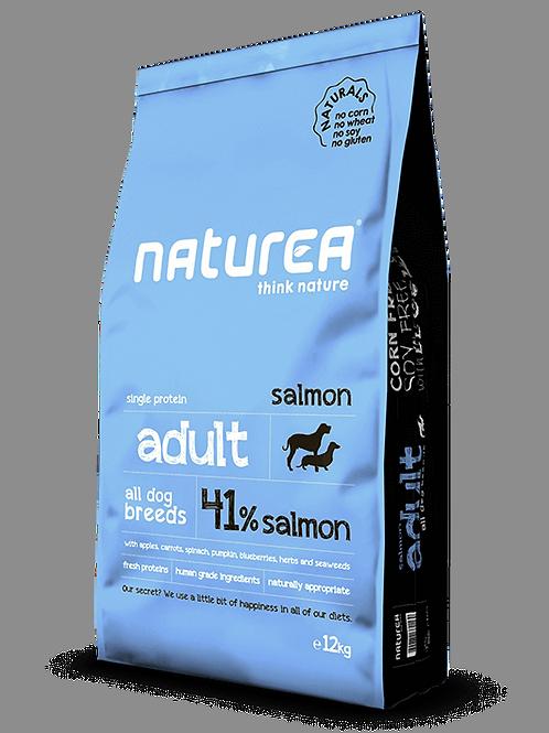 Naturals Adult Salmon 12kg