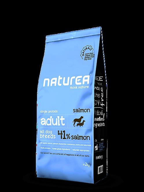Naturals Adult Salmon 2kg