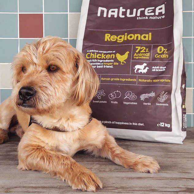naturea growth dog grain free