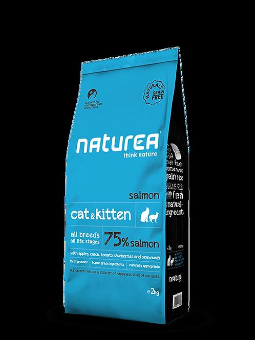 Cat & Kitten Salmon 2kg