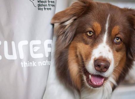 Best dry food for sterilised dogs