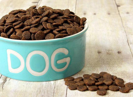 What is holistic dog dry food?