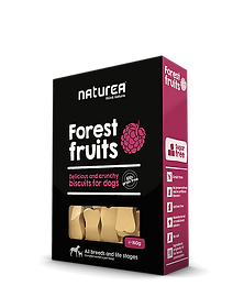 dogbiscuitforestfruits.png