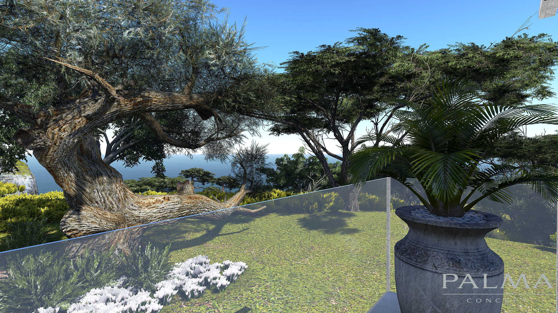 MEDITERRANEAN-PINE-TREES-1