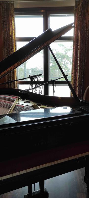 Dal pianoforte