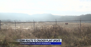 Daelim Chemical, a significant partner in the cracker plant project, backs out