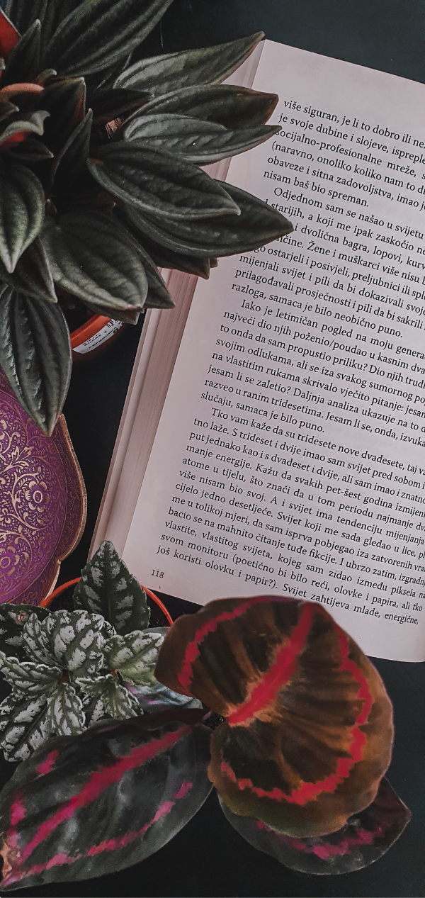 A photo of an open book, sourounded by plants