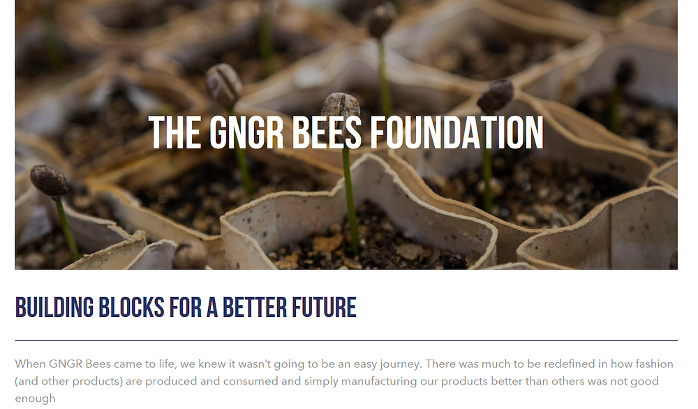 GNGR Bees fundation, funding climate action projects