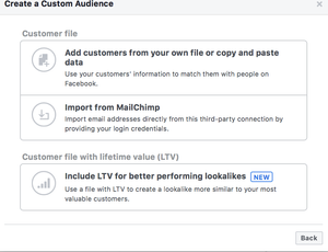 Facebook ads custom audience