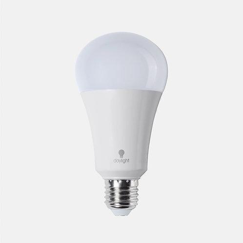 Daylight LED Bulb ES