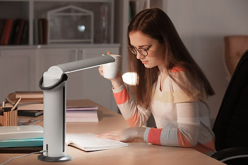 Daylight Twist2 Portable LED Lamp