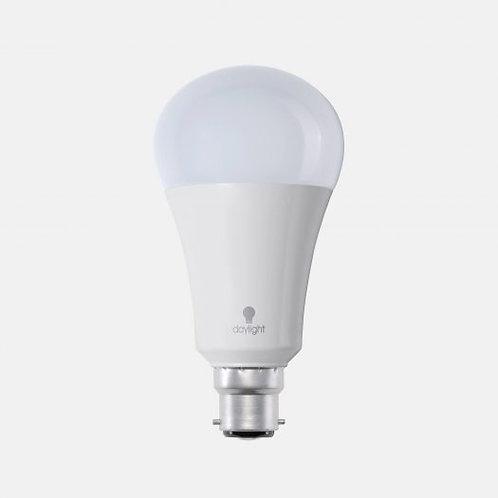 Daylight LED Bulb BC