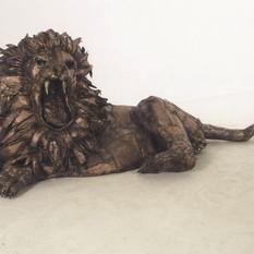 ライオン / Lion