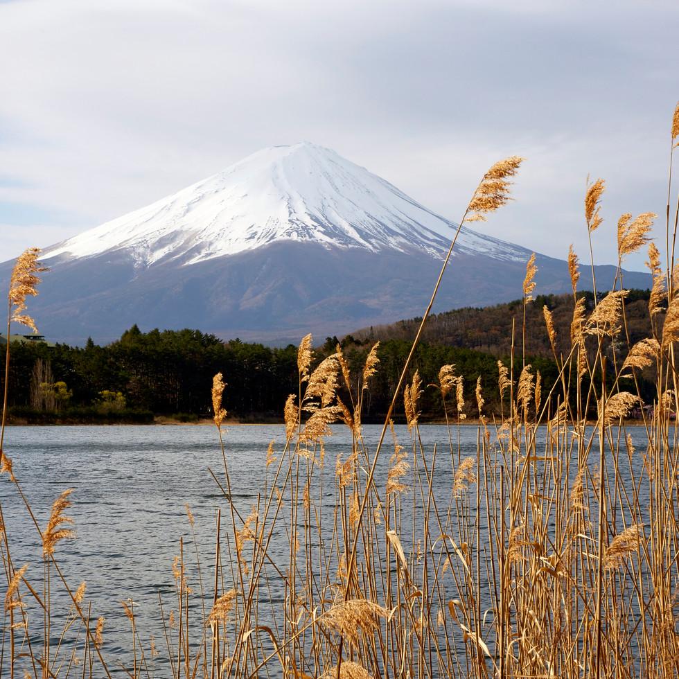Kawaguchi-ko Japan