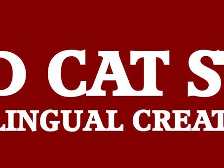 Red Cat Studios Group New Website