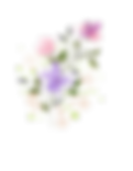 flower-4148707_1920.png