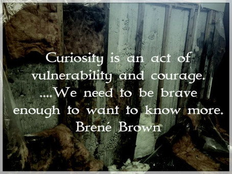The Importance of Being Curious