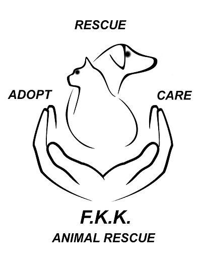 Image of: Dog Cat Animal Welfare Fkk Animal Rescue Animal Welfare Fkk Animal Rescue Xpbonaire Island Life