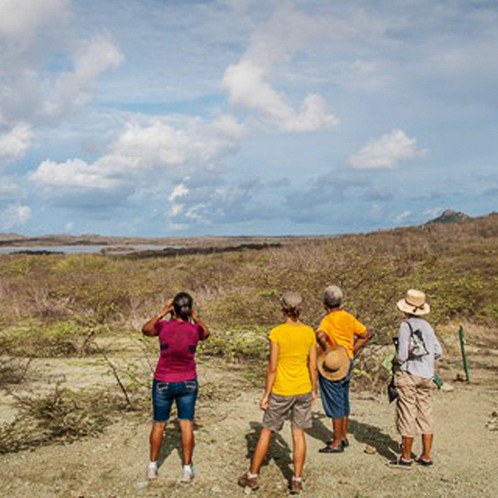 XpBonaire, IslandLife, Bonaire, News, Information, Get involved, Lora's, Echo, STINAPA, DCNA