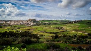Organizzazjonijiet fil-qasam tal-agrikoltura b'sejħa għal-gvern