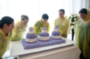 Battle of the Brides Cake Dive at All Dressed in White Bridal Sho