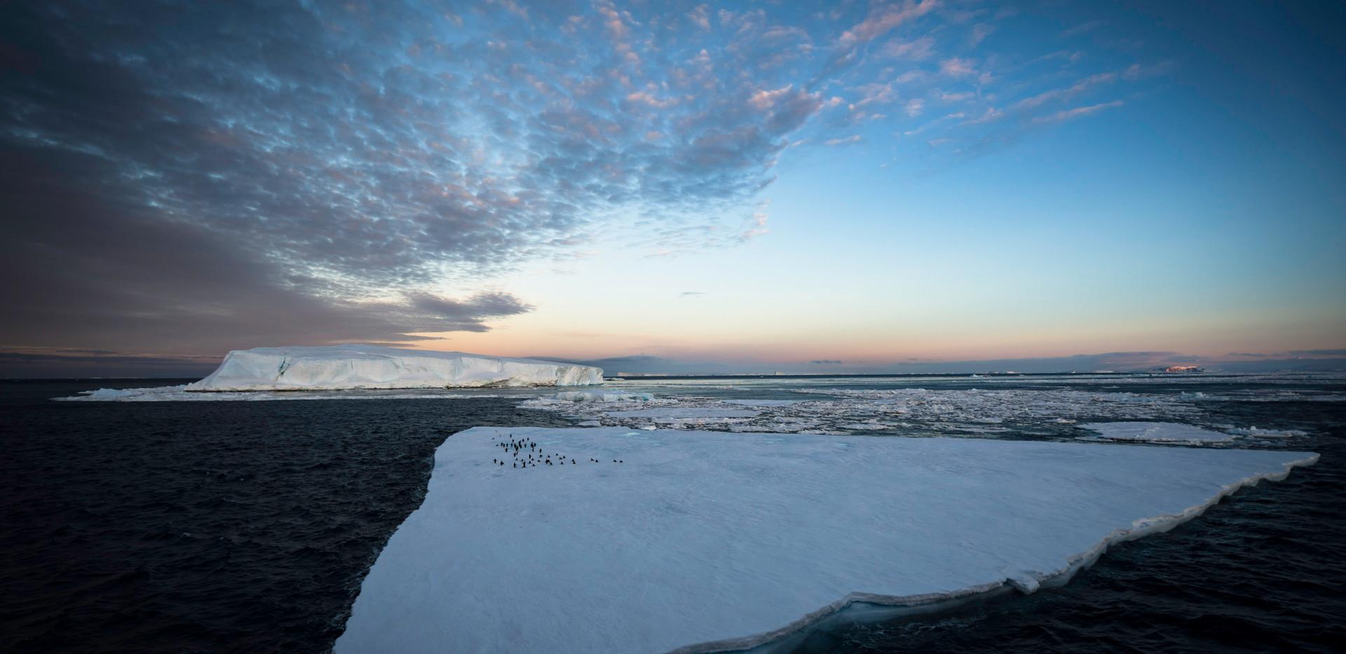Antarctica 5.jpg