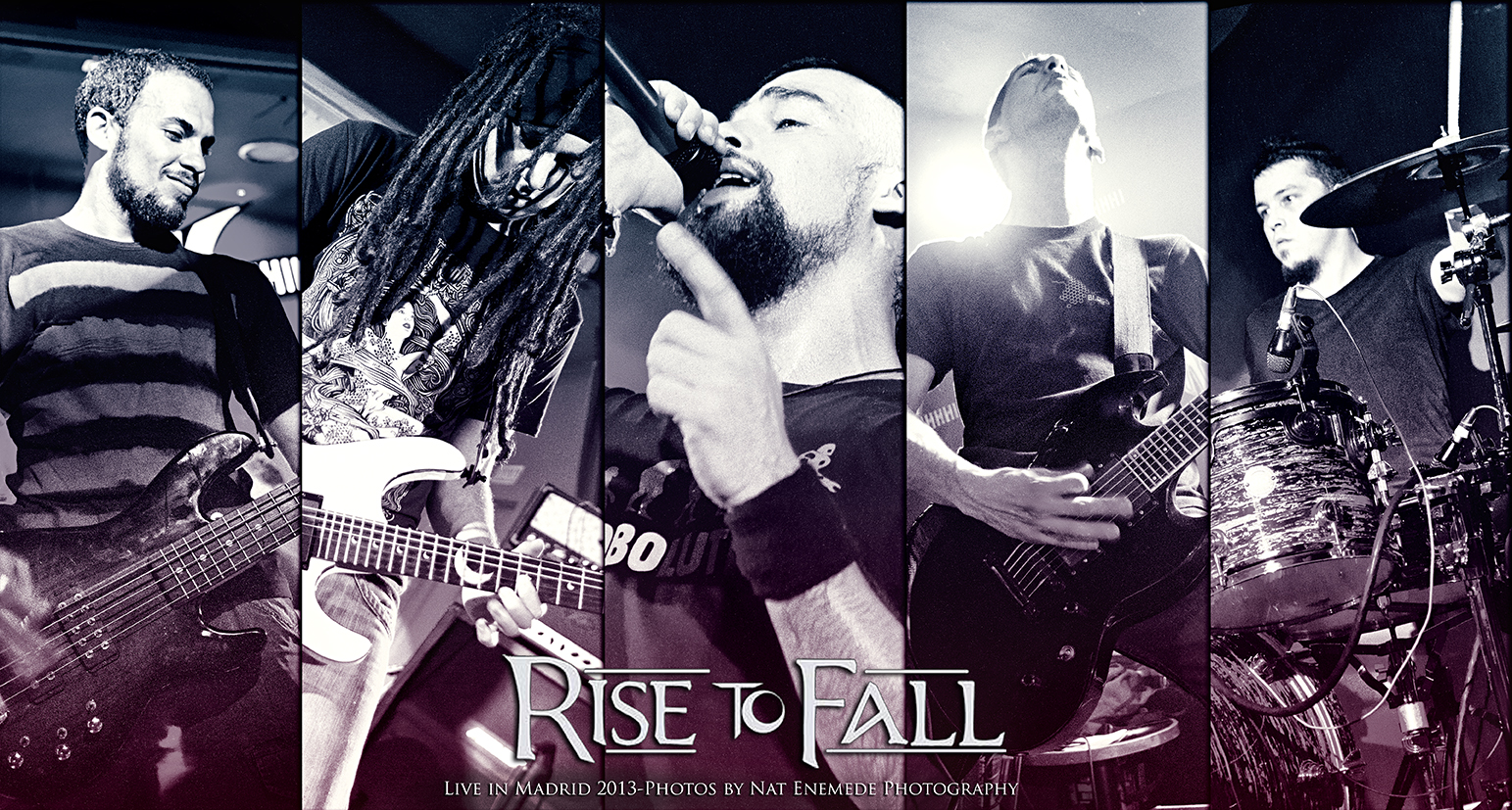 Rise To Fall-2013