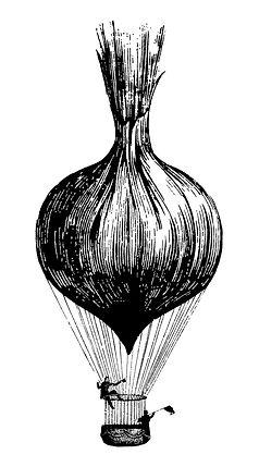 onion_balloon.fa.jpg
