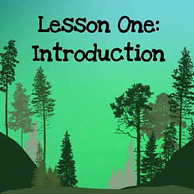 The wisdom of trees audio course. Lesson one introduction.