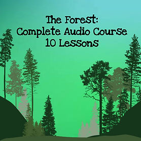 The wisdom of trees audio course. All ten lessons of the complete audio course.