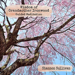 Guided Meditation Grandmother Ironwood Tree Spiritual Wisdom by Shannon Sullivan